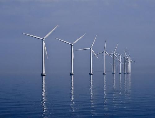 Recovery, svolta in Adriatico: energia green e parchi eolici